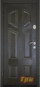 купить входные двери в воронеже